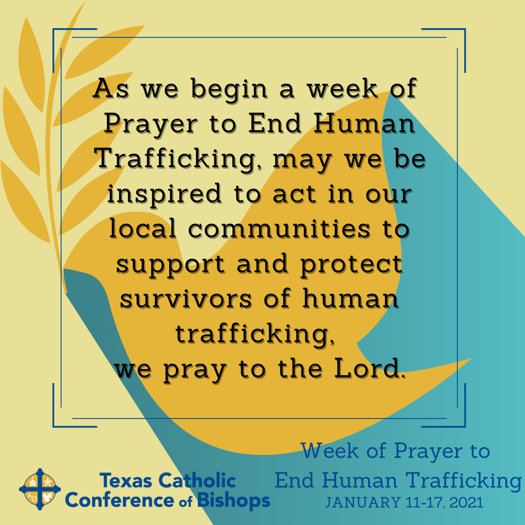 Facebook & Instagram: As Catholics, we believe in the dignity of every human life and vigorously oppose human trafficking and modern-day slavery as it contravenes basic human dignity. Join us in prayer this week to #EndHumanTrafficking. #TexasPraystoEndHT  Twitter: Join us in prayer this week to #EndHumanTrafficking. TexasPraystoEndHT